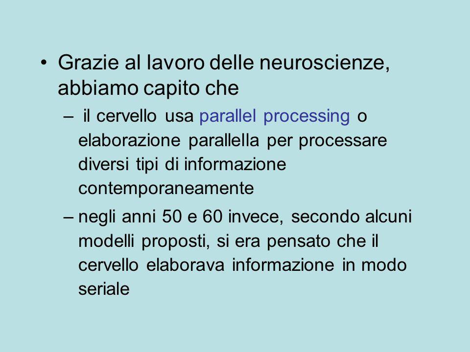 Grazie al lavoro delle neuroscienze, abbiamo capito che – il cervello usa parallel processing o elaborazione parallella per processare diversi tipi di
