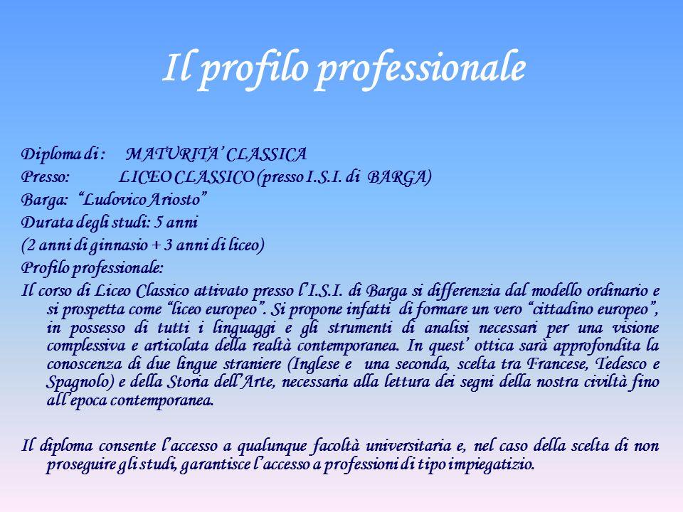 Il profilo professionale Diploma di : MATURITA CLASSICA Presso: LICEO CLASSICO (presso I.S.I. di BARGA) Barga: Ludovico Ariosto Durata degli studi: 5