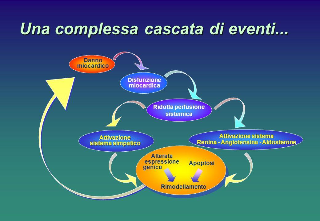 Una complessa cascata di eventi... Alterata espressione genica Apoptosi Rimodellamento Attivazione sistema Renina - Angiotensina - Aldosterone Attivaz