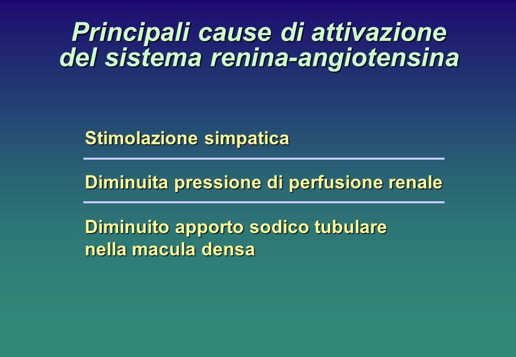 Stimolazione simpatica Diminuita pressione di perfusione renale Diminuito apporto sodico tubulare nella macula densa Principali cause di attivazione d