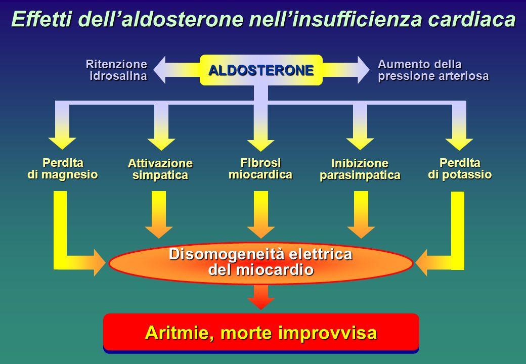 Effetti dellaldosterone nellinsufficienza cardiaca Aritmie, morte improvvisa Aumento della pressione arteriosa Ritenzioneidrosalina Perdita di magnesi