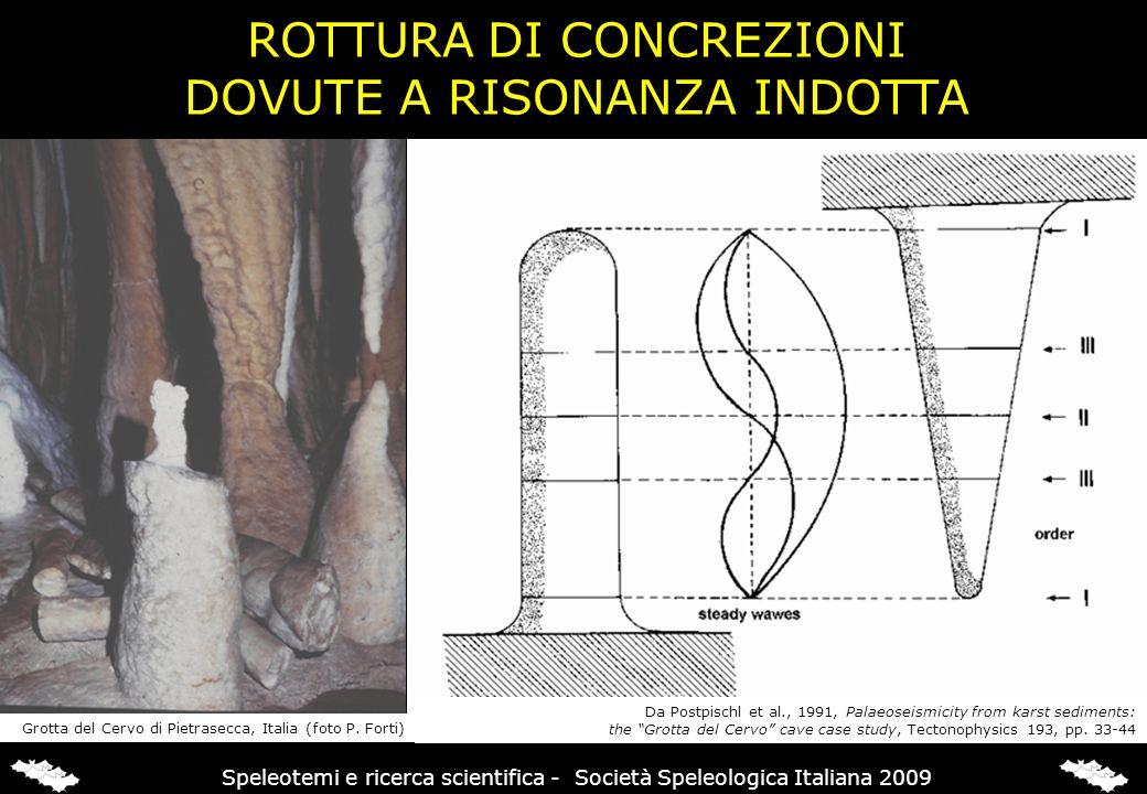 ROTTURA DI CONCREZIONI DOVUTE A RISONANZA INDOTTA Grotta del Cervo di Pietrasecca, Italia (foto P. Forti) Da Postpischl et al., 1991, Palaeoseismicity