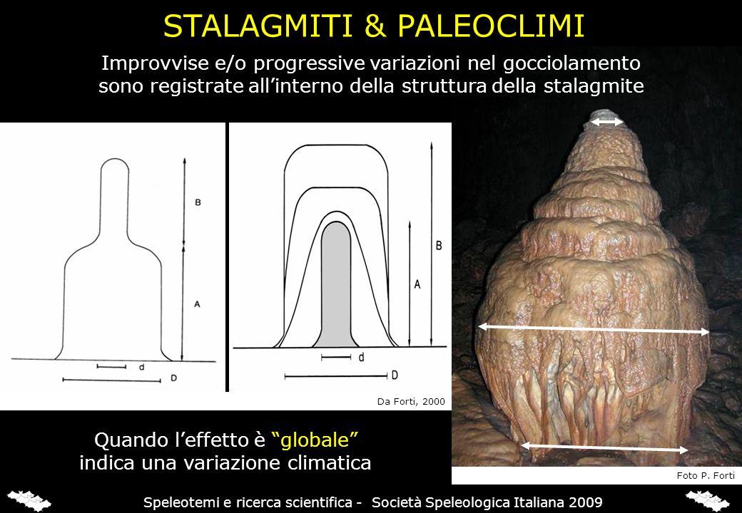 Improvvise e/o progressive variazioni nel gocciolamento sono registrate allinterno della struttura della stalagmite Quando leffetto è globale indica u