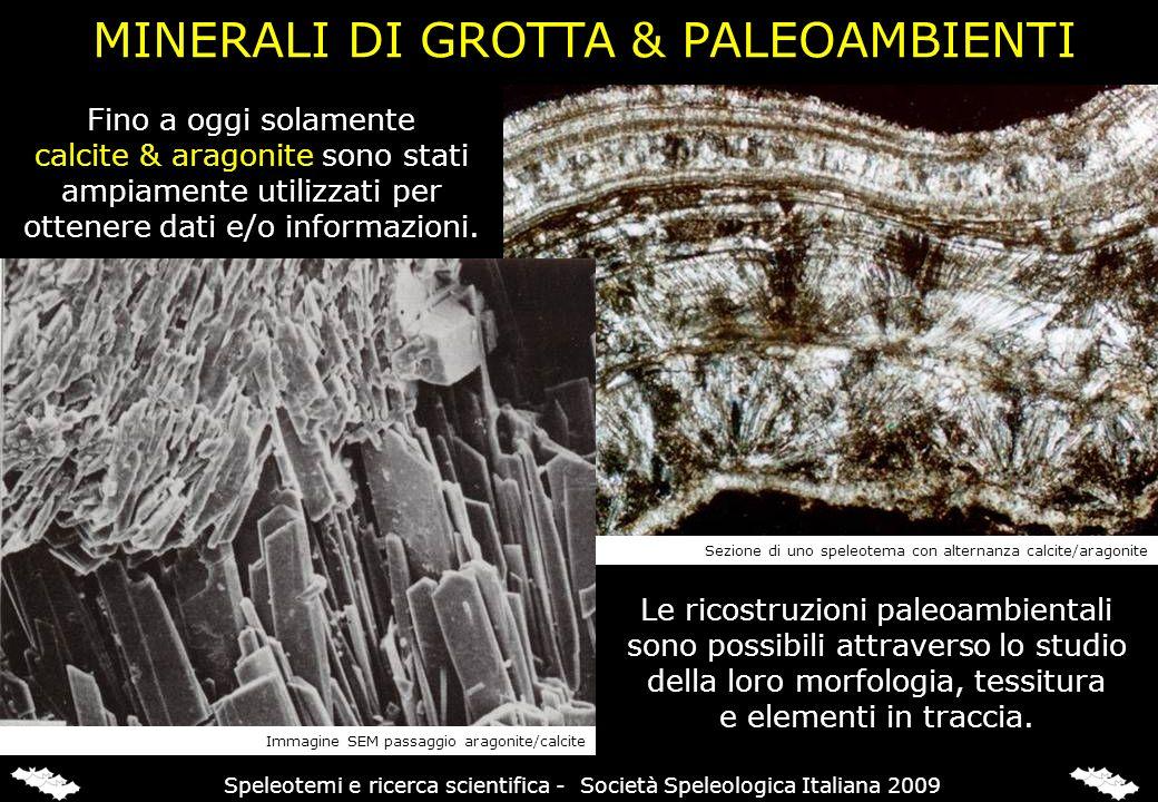 MINERALI DI GROTTA & PALEOAMBIENTI Fino a oggi solamente calcite & aragonite sono stati ampiamente utilizzati per ottenere dati e/o informazioni. Le r
