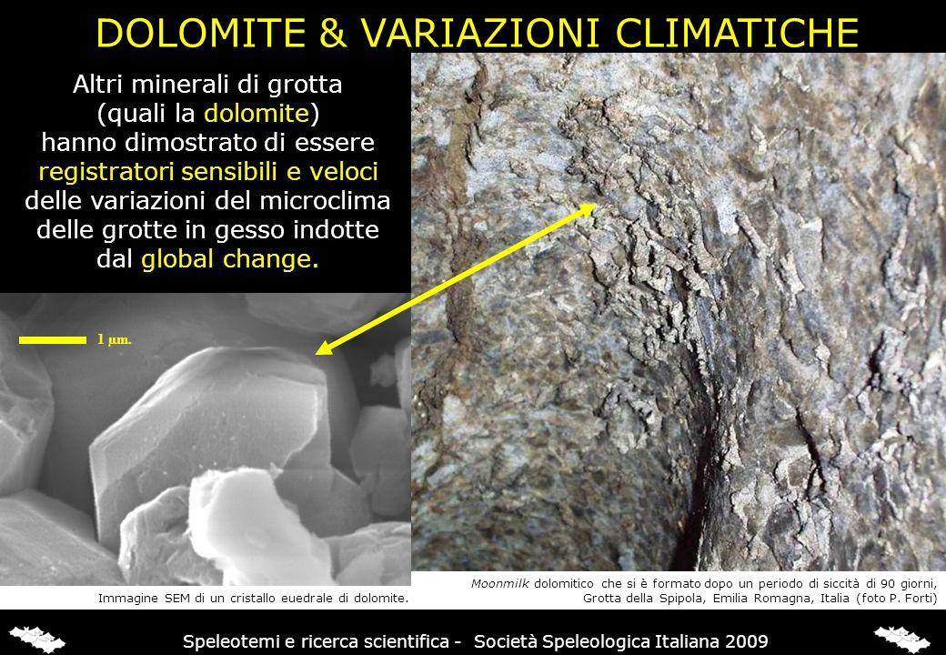 Altri minerali di grotta (quali la dolomite) hanno dimostrato di essere registratori sensibili e veloci delle variazioni del microclima delle grotte i