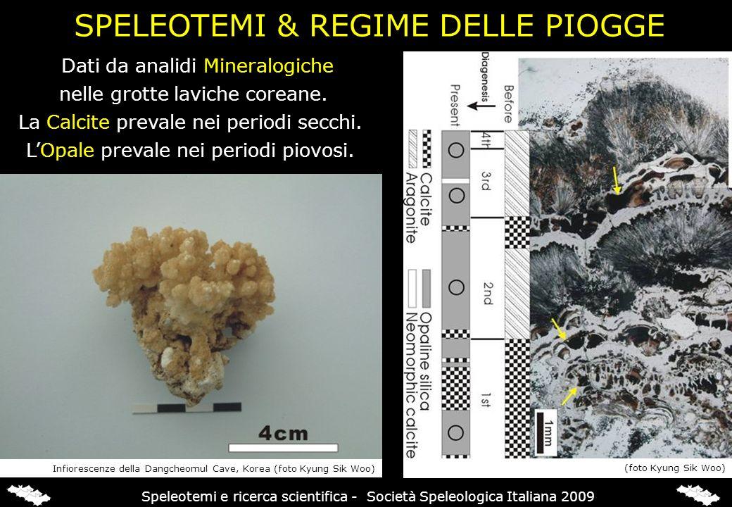 SPELEOTEMI & REGIME DELLE PIOGGE Dati da analidi Mineralogiche nelle grotte laviche coreane. La Calcite prevale nei periodi secchi. LOpale prevale nei