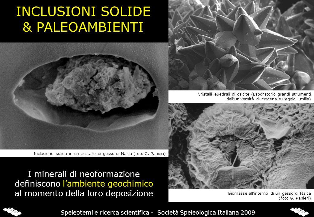 INCLUSIONI SOLIDE & PALEOAMBIENTI I minerali di neoformazione definiscono lambiente geochimico al momento della loro deposizione Inclusione solida in