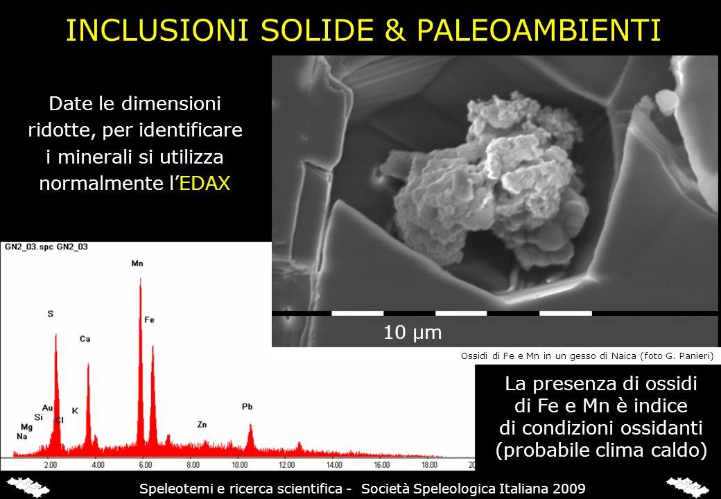 Date le dimensioni ridotte, per identificare i minerali si utilizza normalmente lEDAX 10 μm La presenza di ossidi di Fe e Mn è indice di condizioni os