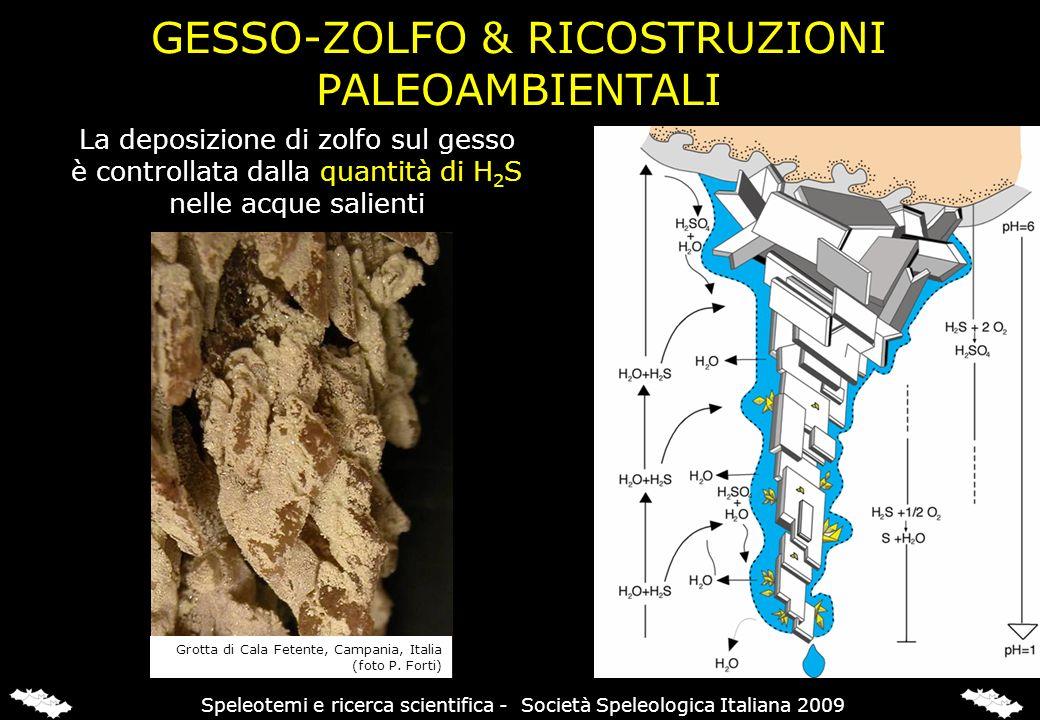 La deposizione di zolfo sul gesso è controllata dalla quantità di H 2 S nelle acque salienti GESSO-ZOLFO & RICOSTRUZIONI PALEOAMBIENTALI Grotta di Cal