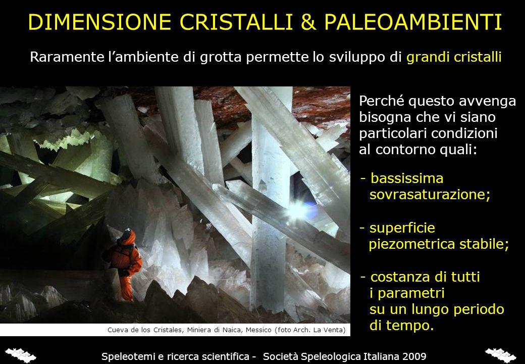 DIMENSIONE CRISTALLI & PALEOAMBIENTI Raramente lambiente di grotta permette lo sviluppo di grandi cristalli Perché questo avvenga bisogna che vi siano