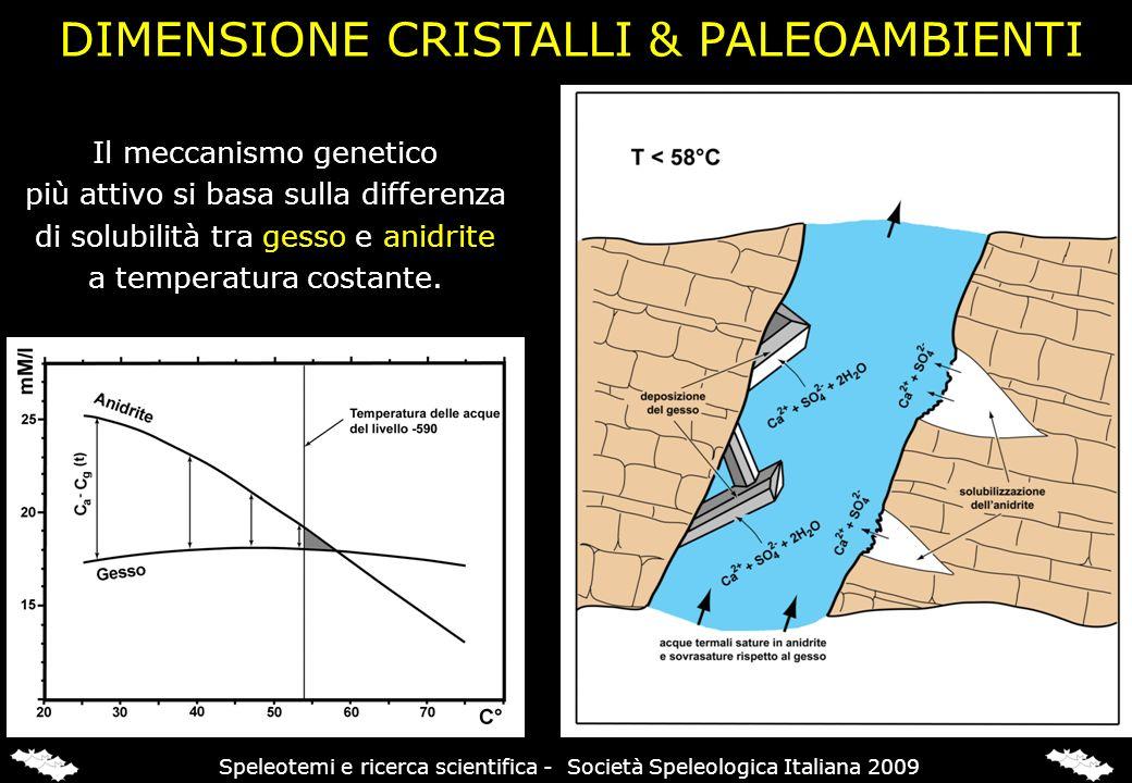 Il meccanismo genetico più attivo si basa sulla differenza di solubilità tra gesso e anidrite a temperatura costante. DIMENSIONE CRISTALLI & PALEOAMBI