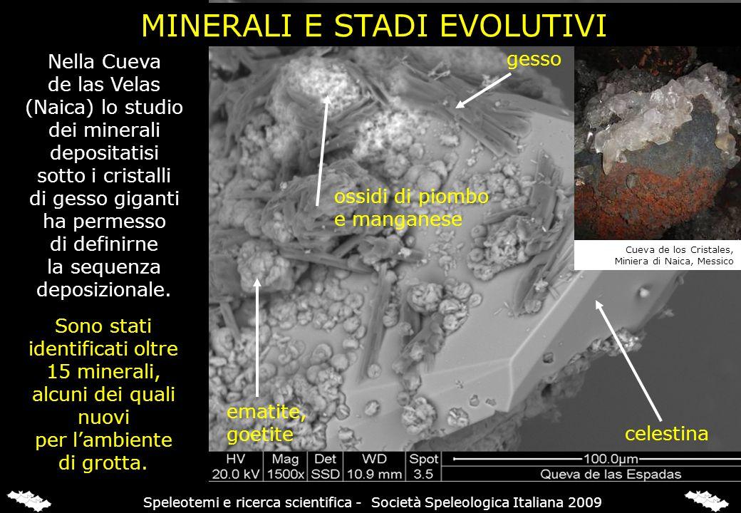 celestina gesso ossidi di piombo e manganese ematite, goetite MINERALI E STADI EVOLUTIVI Nella Cueva de las Velas (Naica) lo studio dei minerali depos