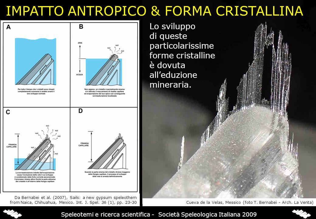 IMPATTO ANTROPICO & FORMA CRISTALLINA Lo sviluppo di queste particolarissime forme cristalline è dovuta alleduzione mineraria. Da Bernabei et al. (200