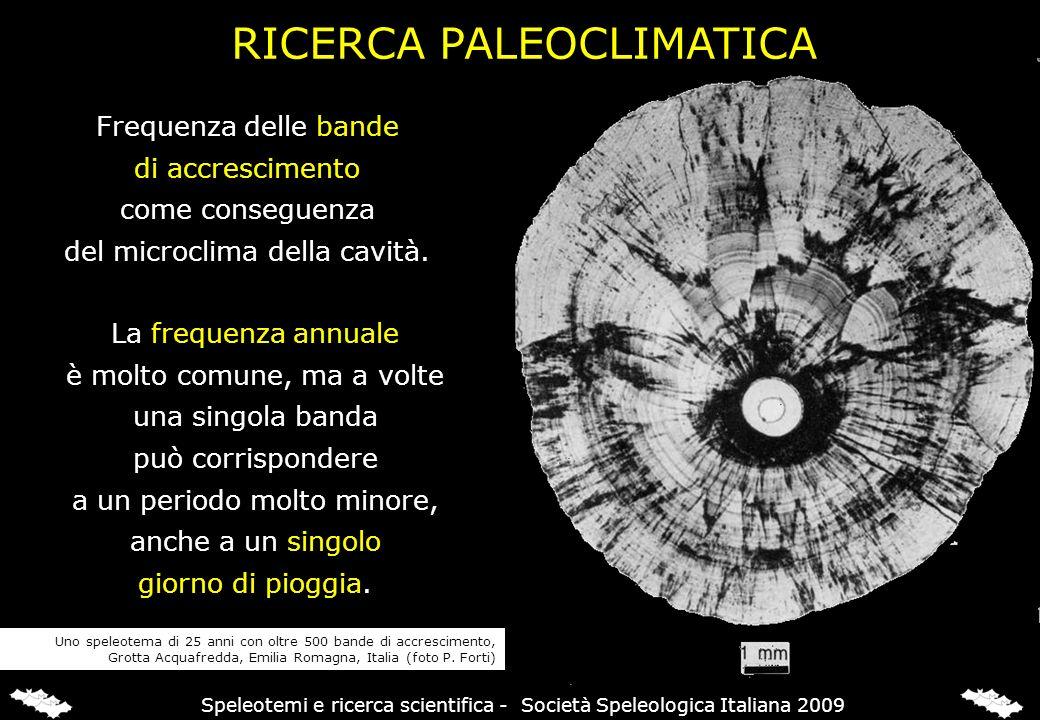 La deposizione di zolfo sul gesso è controllata dalla quantità di H 2 S nelle acque salienti GESSO-ZOLFO & RICOSTRUZIONI PALEOAMBIENTALI Grotta di Cala Fetente, Campania, Italia (foto P.