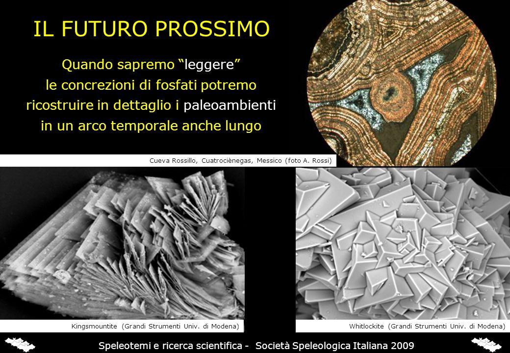 Cueva Rossillo, Cuatrociènegas, Messico (foto A. Rossi) Kingsmountite (Grandi Strumenti Univ. di Modena)Whitlockite (Grandi Strumenti Univ. di Modena)
