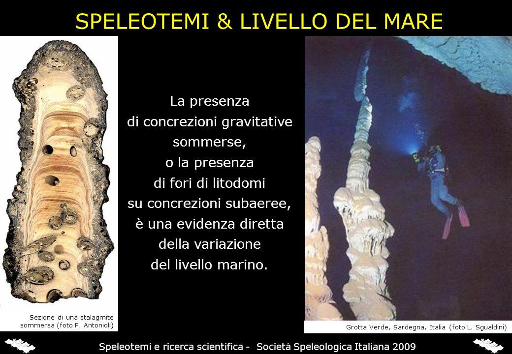 RICOSTRUZIONE PALEOCLIMATICA Speleotemi e ricerca scientifica - Società Speleologica Italiana 2009