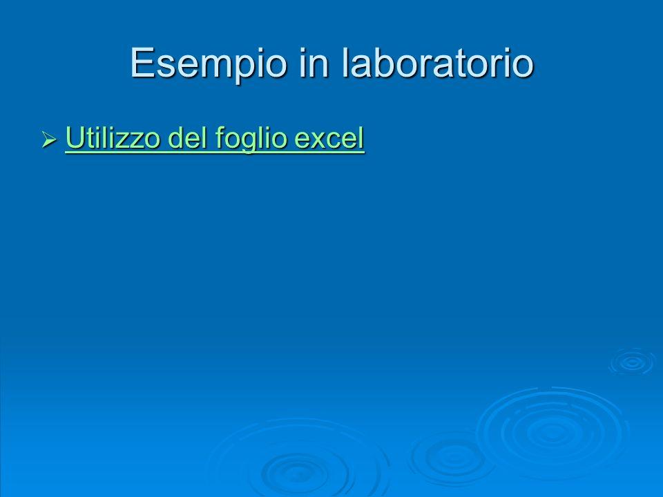 Esempio in laboratorio Utilizzo del foglio excel Utilizzo del foglio excel Utilizzo del foglio excel Utilizzo del foglio excel