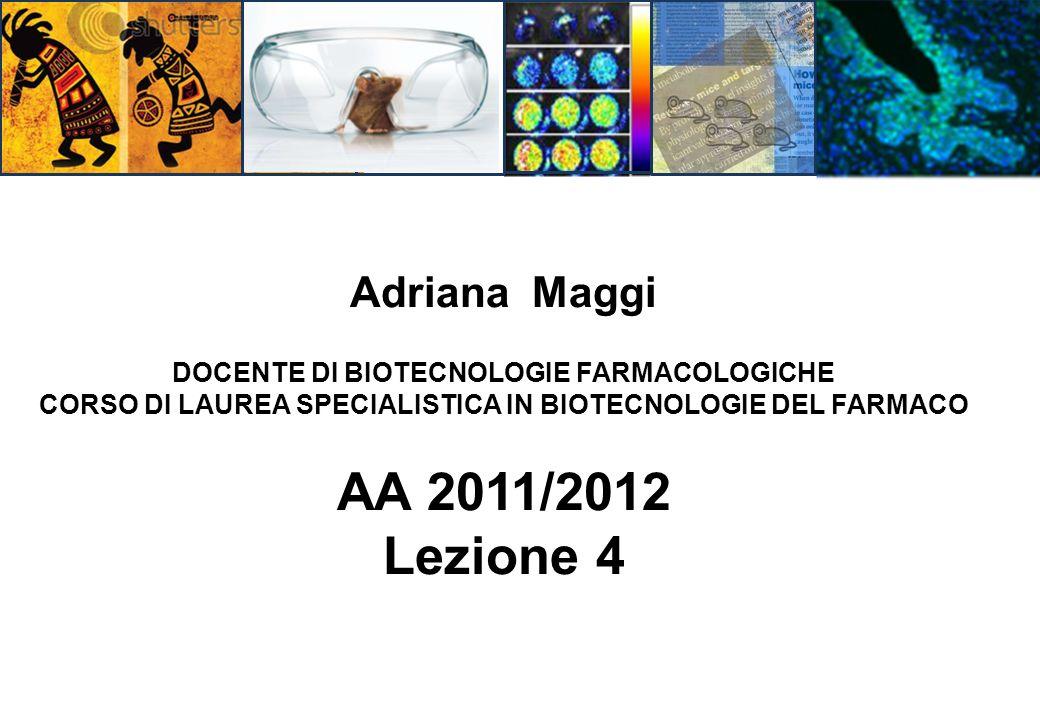 Adriana Maggi DOCENTE DI BIOTECNOLOGIE FARMACOLOGICHE CORSO DI LAUREA SPECIALISTICA IN BIOTECNOLOGIE DEL FARMACO AA 2011/2012 Lezione 4