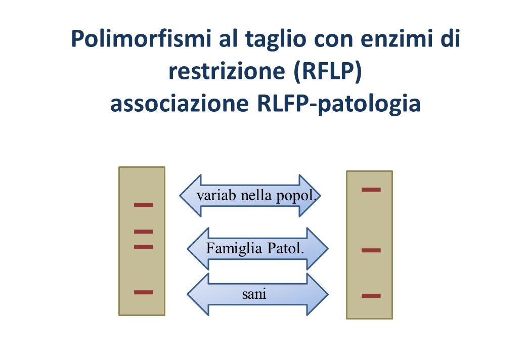 Polimorfismi al taglio con enzimi di restrizione (RFLP) associazione RLFP-patologia Famiglia Patol.