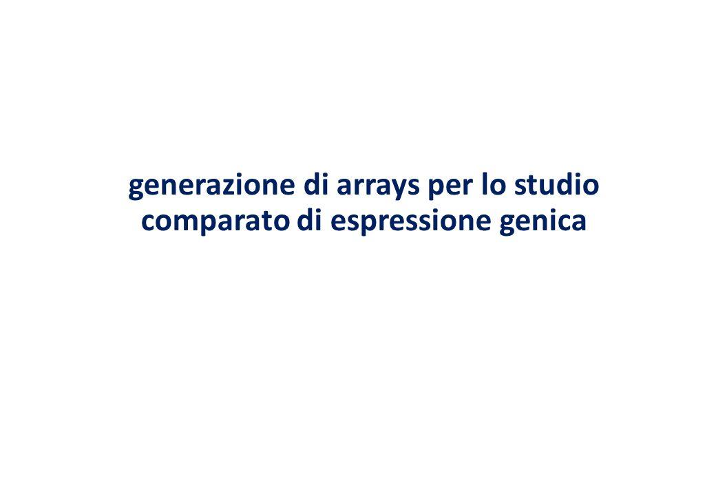 generazione di arrays per lo studio comparato di espressione genica