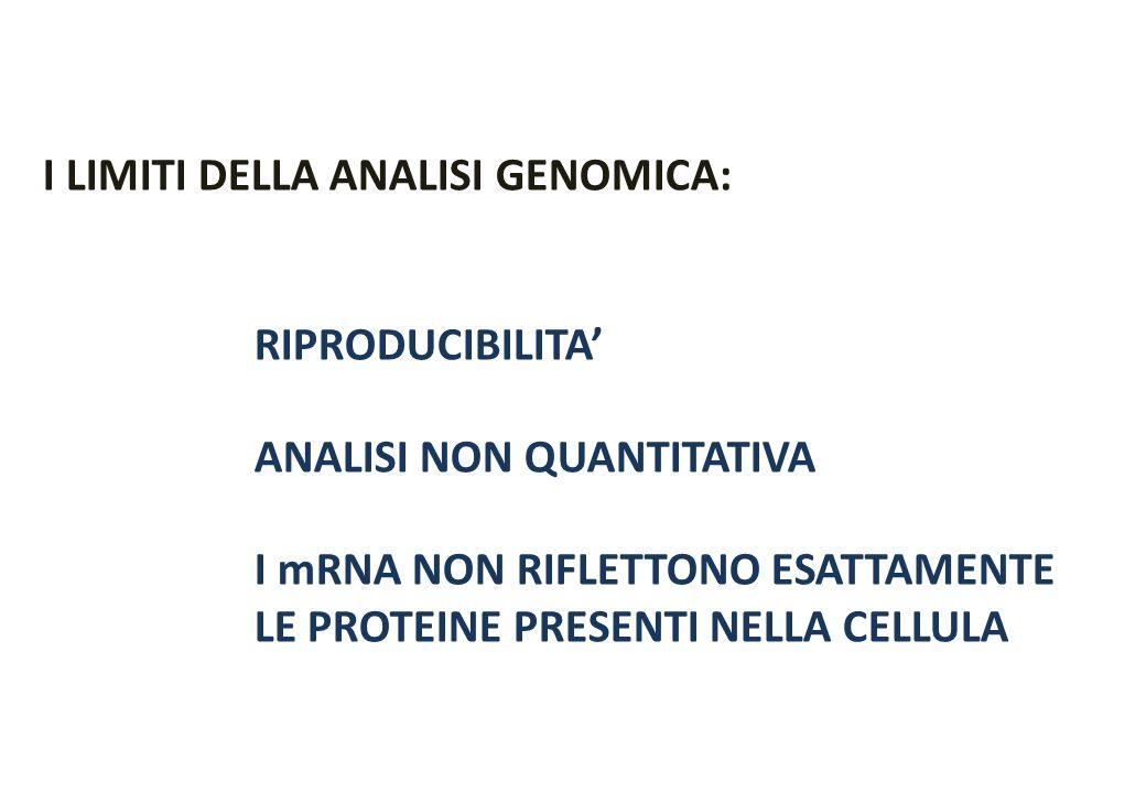 I LIMITI DELLA ANALISI GENOMICA: RIPRODUCIBILITA ANALISI NON QUANTITATIVA I mRNA NON RIFLETTONO ESATTAMENTE LE PROTEINE PRESENTI NELLA CELLULA