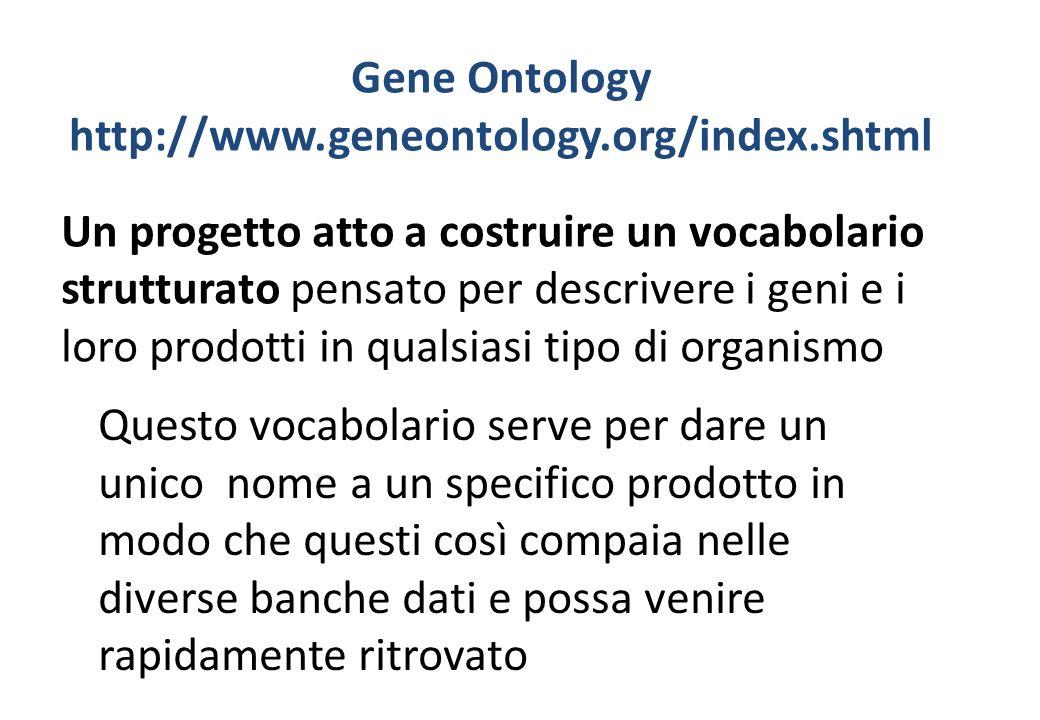Gene Ontology http://www.geneontology.org/index.shtml Un progetto atto a costruire un vocabolario strutturato pensato per descrivere i geni e i loro p