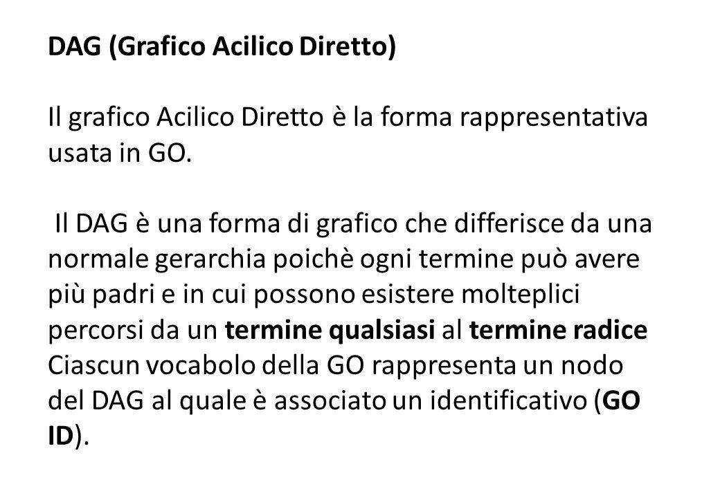 DAG (Grafico Acilico Diretto) Il grafico Acilico Diretto è la forma rappresentativa usata in GO. Il DAG è una forma di grafico che differisce da una n