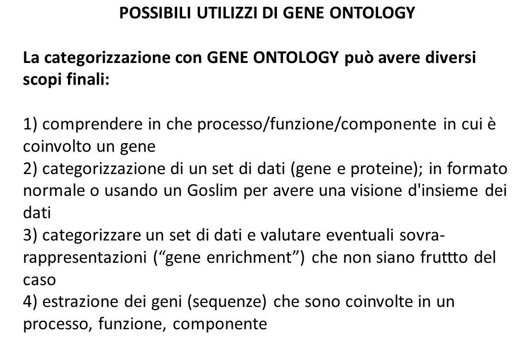 POSSIBILI UTILIZZI DI GENE ONTOLOGY La categorizzazione con GENE ONTOLOGY può avere diversi scopi finali: 1) comprendere in che processo/funzione/componente in cui è coinvolto un gene 2) categorizzazione di un set di dati (gene e proteine); in formato normale o usando un Goslim per avere una visione d insieme dei dati 3) categorizzare un set di dati e valutare eventuali sovra- rappresentazioni (gene enrichment) che non siano fruttto del caso 4) estrazione dei geni (sequenze) che sono coinvolte in un processo, funzione, componente