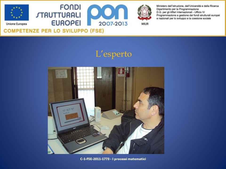 Lesperto C-1-FSE-2011-1773 - I processi matematici