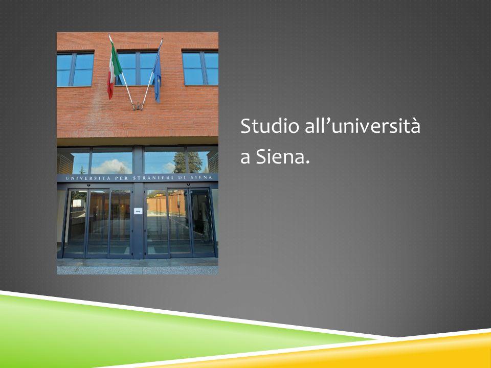 Studio alluniversità a Siena.