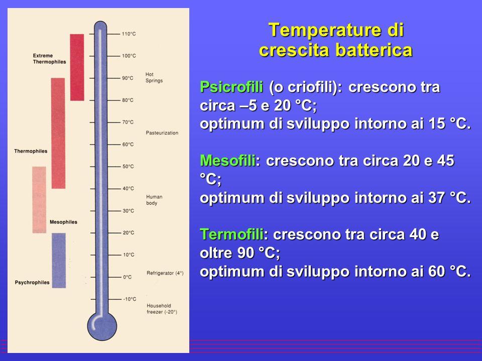 Fattori ambientali che condizionano la crescita batterica ÊTemperatura: tutti i batteri sono caratterizzati da un intervallo di temperatura in cui pos