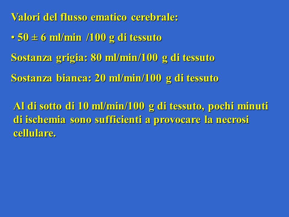 Valori del flusso ematico cerebrale: 50 ± 6 ml/min /100 g di tessuto 50 ± 6 ml/min /100 g di tessuto Sostanza grigia: 80 ml/min/100 g di tessuto Sosta