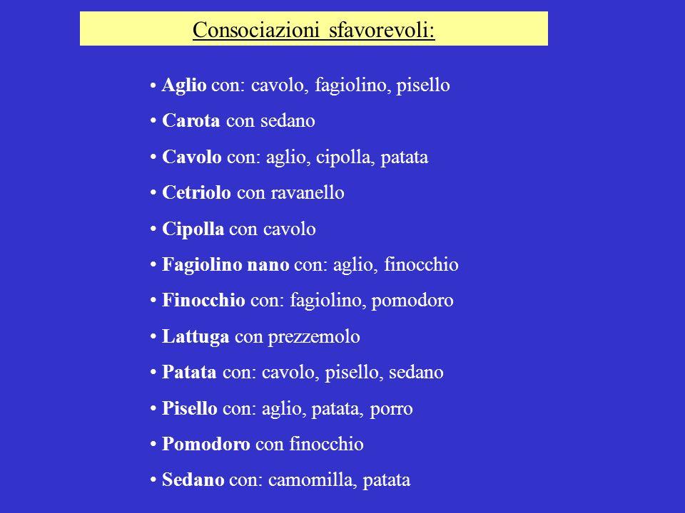 Consociazioni sfavorevoli: Aglio con: cavolo, fagiolino, pisello Carota con sedano Cavolo con: aglio, cipolla, patata Cetriolo con ravanello Cipolla c