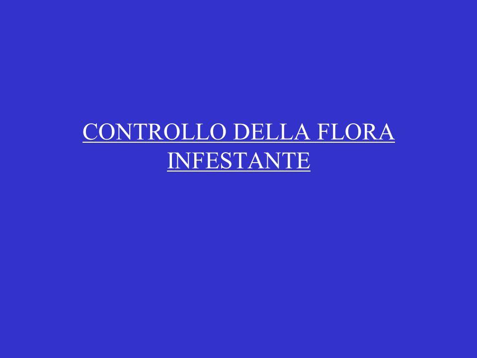 CONTROLLO DELLA FLORA INFESTANTE