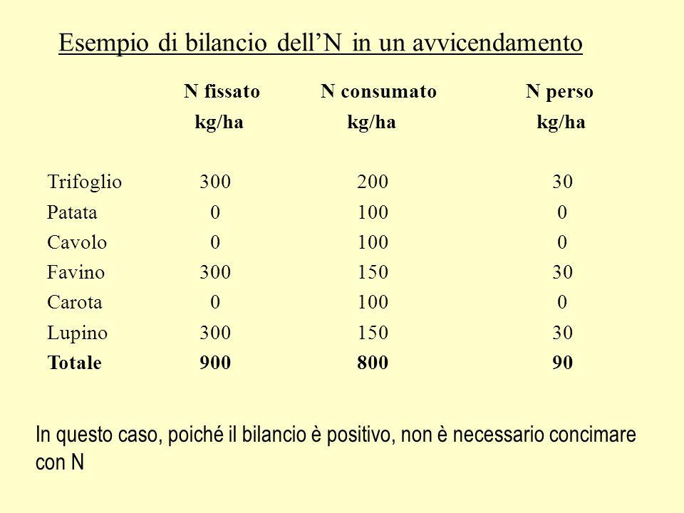Esempio di bilancio dellN in un avvicendamento N fissatoN consumatoN perso kg/ha kg/ha kg/ha Trifoglio 300 200 30 Patata 0 100 0 Cavolo 0 100 0 Favino