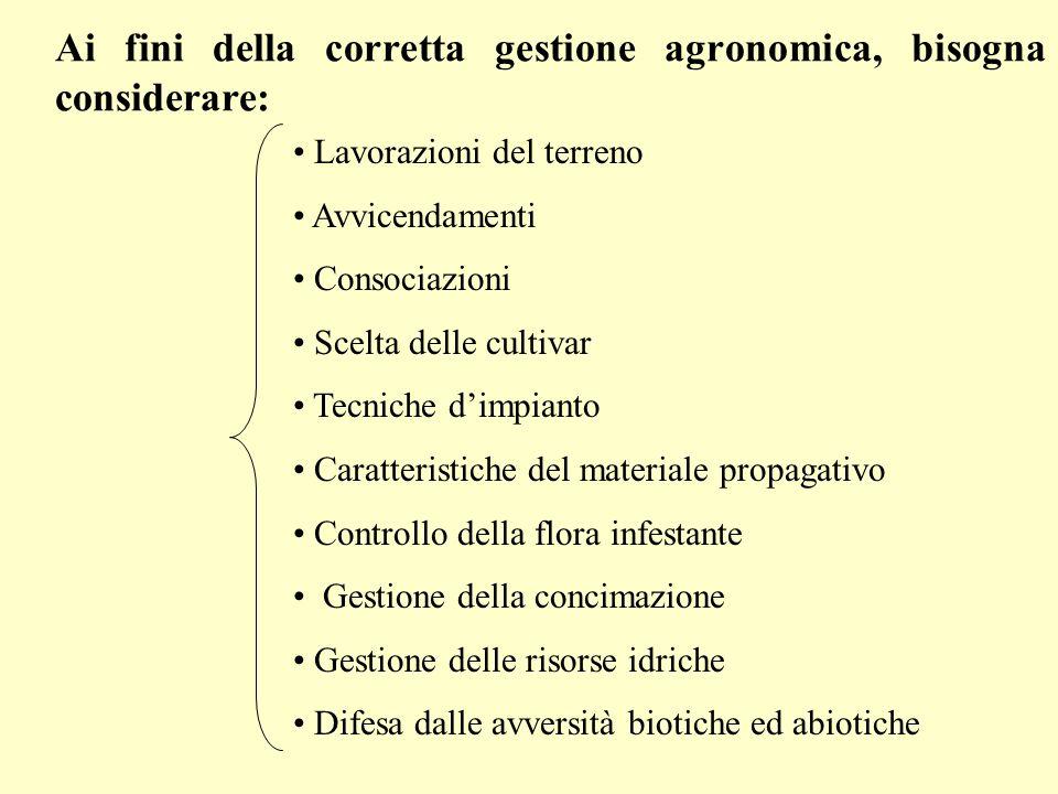 In orticoltura le specie più utilizzate per sovescio sono Trifolium incarnatum, T.