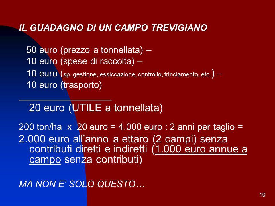 10 IL GUADAGNO DI UN CAMPO TREVIGIANO 50 euro (prezzo a tonnellata) – 10 euro (spese di raccolta) – 10 euro ( sp. gestione, essiccazione, controllo, t