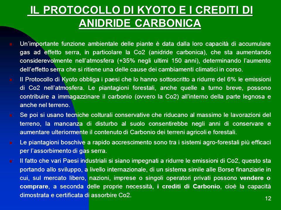 12 IL PROTOCOLLO DI KYOTO E I CREDITI DI IL PROTOCOLLO DI KYOTO E I CREDITI DI ANIDRIDE CARBONICA Unimportante funzione ambientale delle piante è data