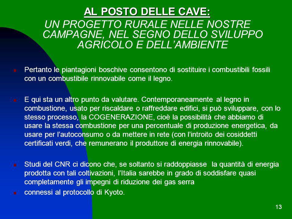 13 AL POSTO DELLE CAVE: UN PROGETTO RURALE NELLE NOSTRE CAMPAGNE, NEL SEGNO DELLO SVILUPPO AGRICOLO E DELLAMBIENTE Pertanto le piantagioni boschive co
