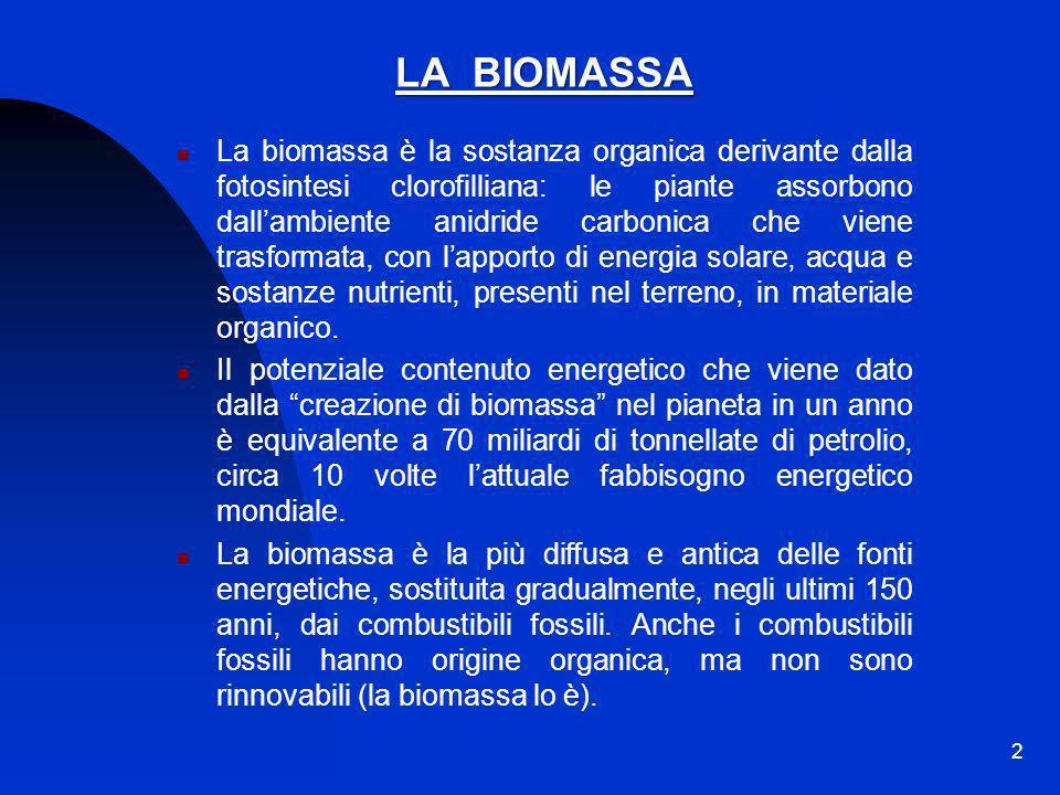 2 LA BIOMASSA La biomassa è la sostanza organica derivante dalla fotosintesi clorofilliana: le piante assorbono dallambiente anidride carbonica che vi