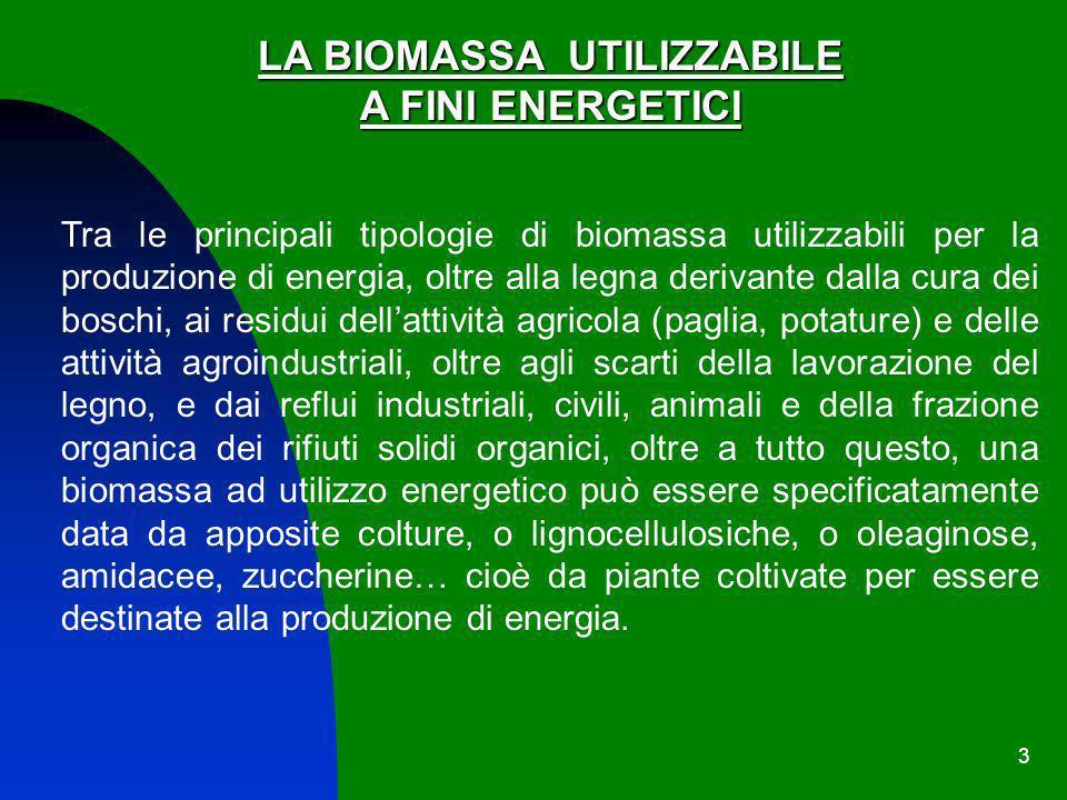 3 LA BIOMASSA UTILIZZABILE A FINI ENERGETICI Tra le principali tipologie di biomassa utilizzabili per la produzione di energia, oltre alla legna deriv