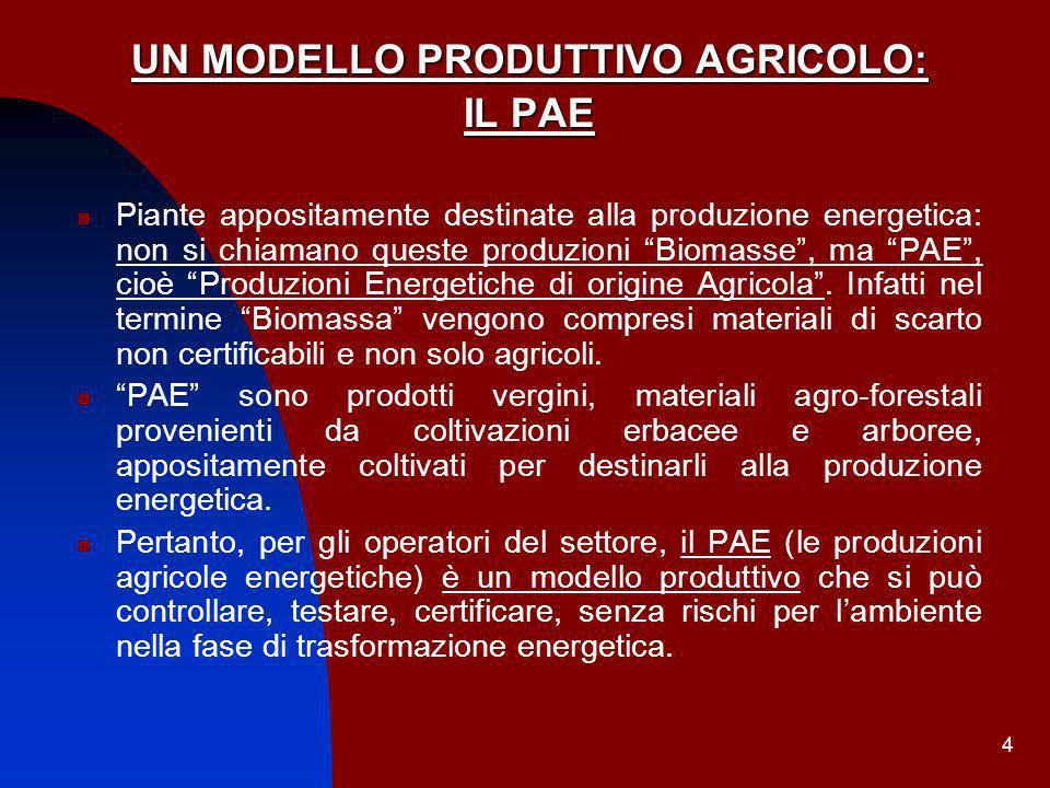 4 UN MODELLO PRODUTTIVO AGRICOLO: IL PAE Piante appositamente destinate alla produzione energetica: non si chiamano queste produzioni Biomasse, ma PAE