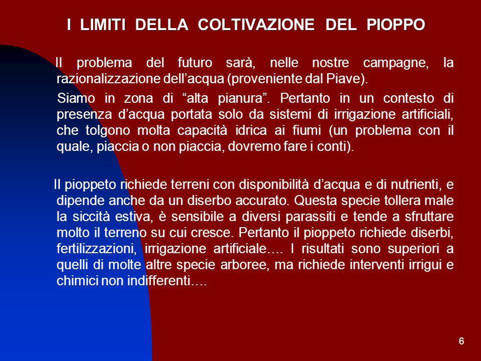6 I LIMITI DELLA COLTIVAZIONE DEL PIOPPO Il problema del futuro sarà, nelle nostre campagne, la razionalizzazione dellacqua (proveniente dal Piave). S