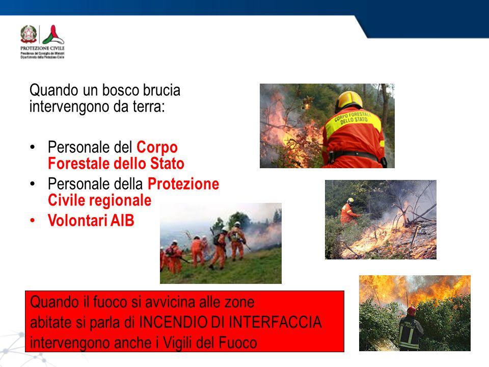 Quando il fuoco si avvicina alle zone abitate si parla di INCENDIO DI INTERFACCIA intervengono anche i Vigili del Fuoco Quando un bosco brucia intervengono da terra: Personale del Corpo Forestale dello Stato Personale della Protezione Civile regionale Volontari AIB