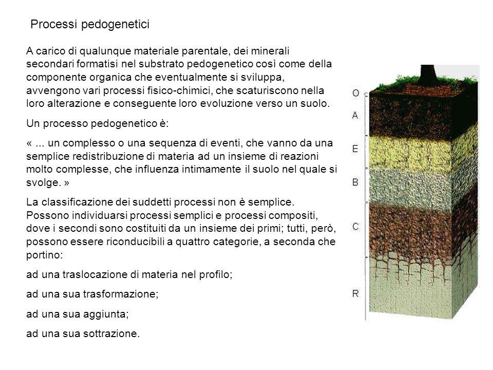 A carico di qualunque materiale parentale, dei minerali secondari formatisi nel substrato pedogenetico così come della componente organica che eventua