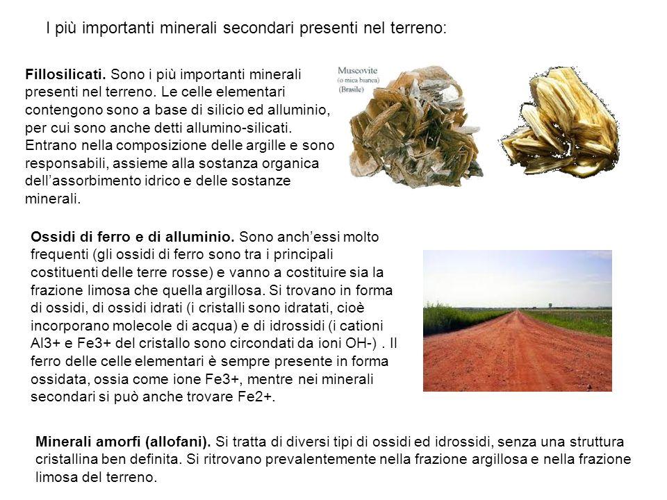 I più importanti minerali secondari presenti nel terreno: Fillosilicati. Sono i più importanti minerali presenti nel terreno. Le celle elementari cont