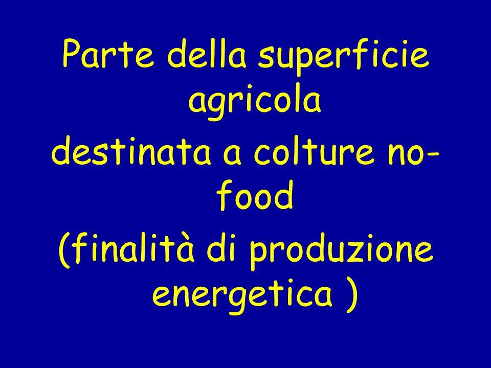 Parte della superficie agricola destinata a colture no- food (finalità di produzione energetica )