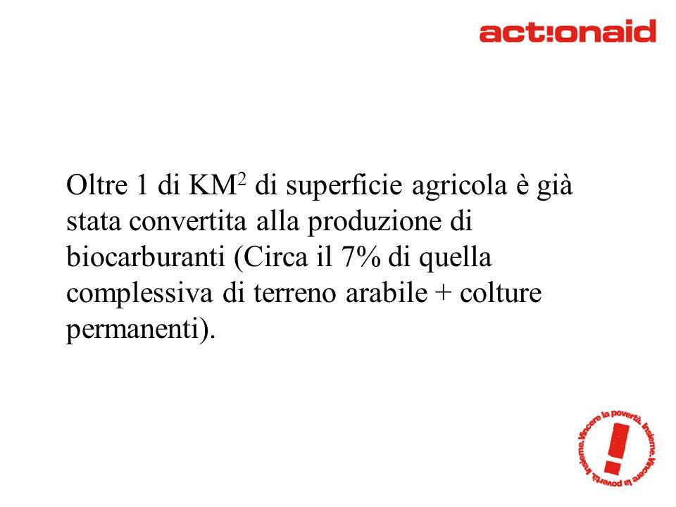 Oltre 1 di KM 2 di superficie agricola è già stata convertita alla produzione di biocarburanti (Circa il 7% di quella complessiva di terreno arabile + colture permanenti).