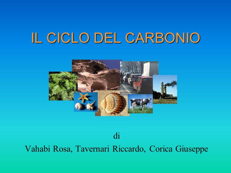 Passaggi Chimici (Pioggia) CO 2 + H 2 O H 2 CO 3 (Solubilizzazione) H 2 CO 3 + H 2 O H 3 O + + HCO 3 - (Alterazione delle rocce) CaCO 3 + H 3 O + + HCO 3 - Ca ++ + 2 HCO 3 - + H 2 O (Formazione di gusci e scheletri) Ca ++ + 2 HCO 3 - CaCO 3 + H 2 O + CO 2 (Terreno) CaCO 3 + SiO 2 CaSiO 3 + CO 2 Atmosfera