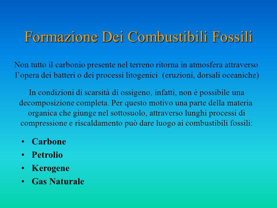 Formazione Dei Combustibili Fossili Non tutto il carbonio presente nel terreno ritorna in atmosfera attraverso lopera dei batteri o dei processi litog